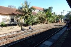 nuwara-eliya-hill-country-sri-lanka-blog-z-otroki-dopust-z-otroki-azija3
