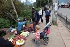 nuwara-eliya-hill-country-sri-lanka-blog-z-otroki-dopust-z-otroki-azija22