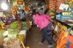 nuwara-eliya-hill-country-sri-lanka-blog-z-otroki-dopust-z-otroki-azija23